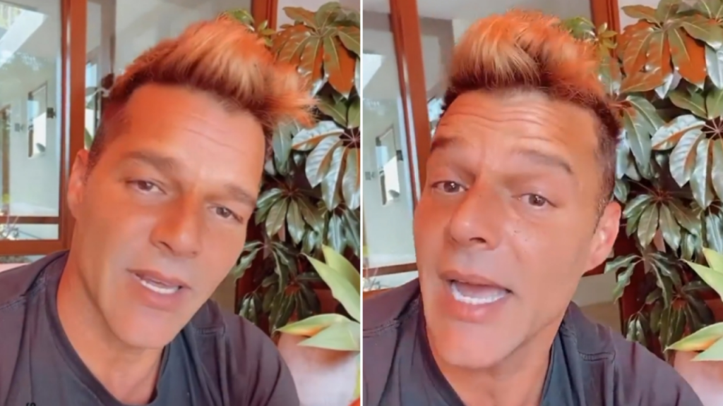 After aesthetic retouching and memes, Ricky Martin has reappeared on networks and chatted with his fans
