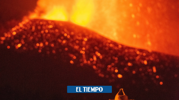 Lava touches the sea: damage is increasing - science - life