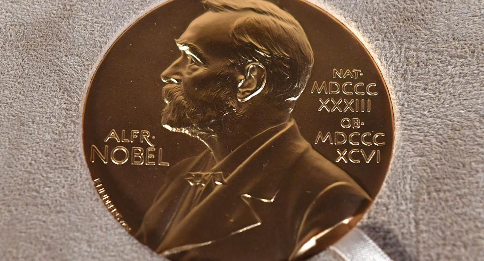 Nobel Prize 2021: These are all the scientific discoveries awarded this year |  Technique