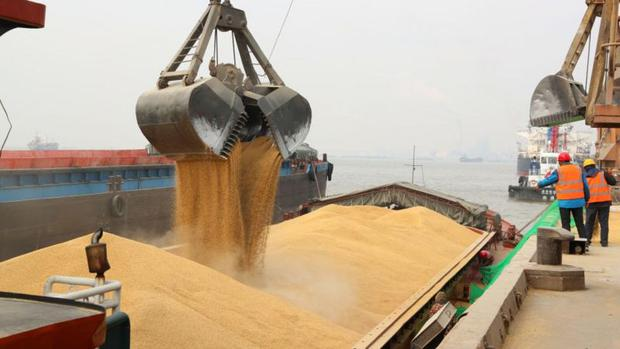Food prices, like this Canadian barley being dumped in Nantong, China, have soared due to a number of factors.  (VCG/Getty Images).